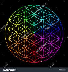 rainbowsigns19